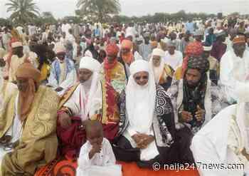 Eid el-Kabir: Foundation donates foodstuff to vulnerable persons in Sokoto - Naija247news