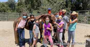 Laughing Pony Rescue camp offers kids a special summer experience - Del Mar Times