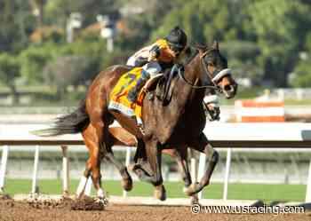 Del Mar Odds (Sunday): Hard Not to Love Clement Hirsch 6-Horse Field - US Racing