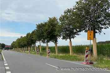 B 54 Richtung Werne: Geh- und Radweg wird nun doch saniert - Ruhr Nachrichten