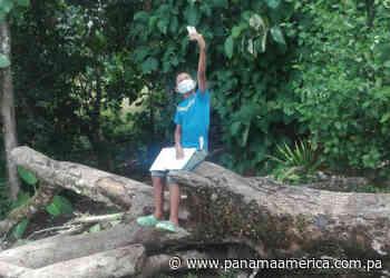 Estudiantes de Santa Rosa en Palenque no tienen acceso al wifi de la escuela - Panamá América