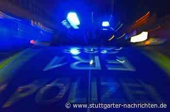 Mosbach - Betrunkene klettert auf Gleisen herum - Mann greift ein - Stuttgarter Nachrichten