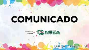 Escola de Artes de Marechal Rondon está com matrículas abertas para cursos on-line - Aquiagora.net