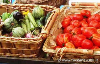 Il mercato contadino di Carpi torna nell'ex-foro boario - Modena 2000