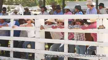 'Some business won't survive': Tourism heartbreak over rodeo - Warwick Daily News