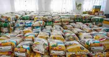 Praia Grande já entregou mais de 26 mil cestas básicas com a campanha Parceiros do Bem - A Tribuna