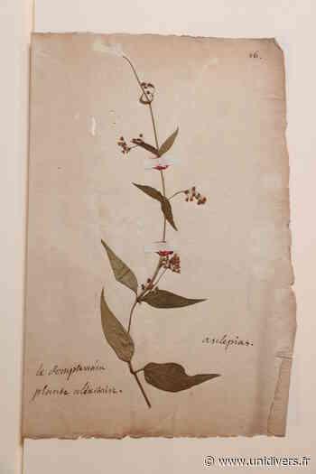 L'herbier de l'apothicaire Muséum d'Auxerre samedi 19 septembre 2020 - Unidivers