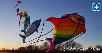 Drachenfest Nordwest In Westerstede: Darauf werden ganz viele fliegen - Nordwest-Zeitung