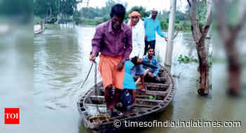 UP: 293 villages hit as three rivers flow above danger mark - Times of India