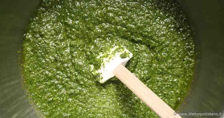 Pesto, tutti i segreti di questo condimento: dalle sue numerose proprietà a tutte le varianti – RICETTE