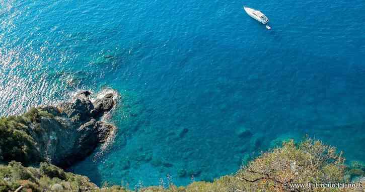 Turismo subacqueo, nasce la rete dei siti sommersi. Regole: guardare e non toccare
