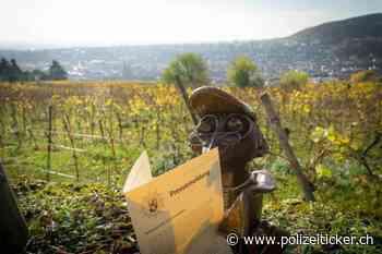 Neustadt - Betrunken zur Polizeidienststelle gefahren - Polizeiticker.ch