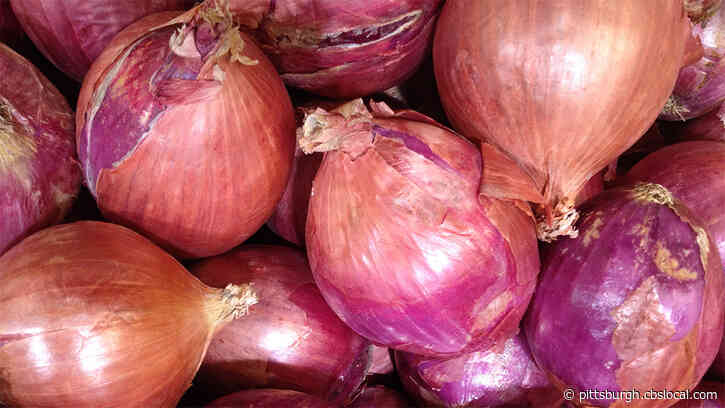 Red Onions Linked To Salmonella Outbreak That Has Sickened People In Pennsylvania And 30 Other States
