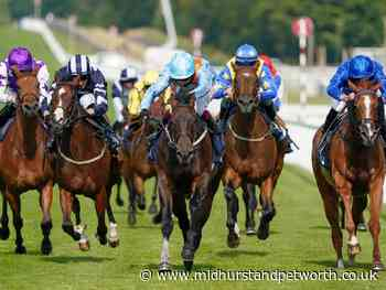 Meraas can make merry in Goodwood's Stewards' Cup - Midhurst and Petworth Observer