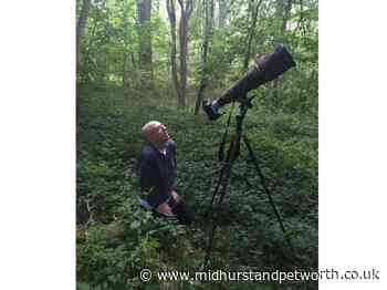 Competition launches for young Horsham photographers - Midhurst and Petworth Observer