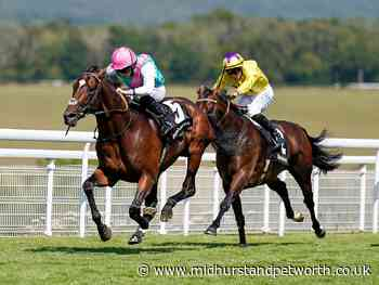 Picture special from Friday's Glorious Goodwood action - Midhurst and Petworth Observer