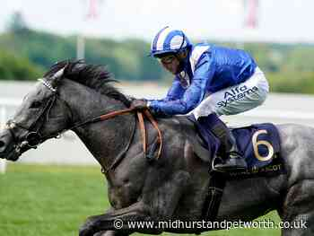 Goodwood Friday tips - there's one horse who looks unbeatable - Midhurst and Petworth Observer