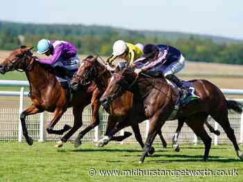 Picture special - Thursday's Glorious Goodwood action - Midhurst and Petworth Observer