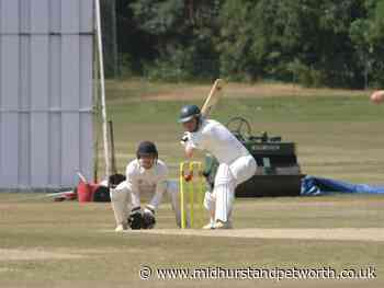 Horsham and Roffey cricketers glad to get competitive again - Midhurst and Petworth Observer