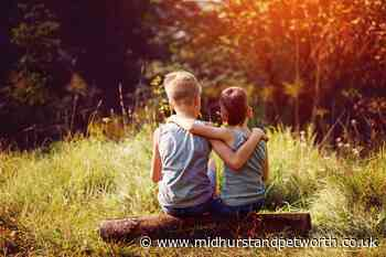 Today is International Day of Friendship - here's how you can celebrate - Midhurst and Petworth Observer