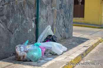 Multas de Limpia Pública en Xalapa, no se acaban en pandemia - PalabrasClaras.mx