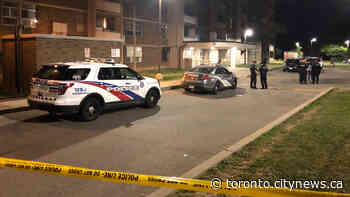Male seriously injured in North York shooting - CityNews Toronto