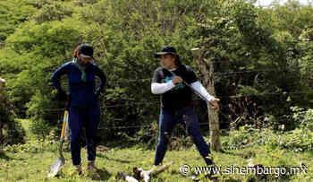 Familiares inician búsqueda de personas desaparecidas en fosas clandestinas de Huitzuco, Guerrero - SinEmbargo