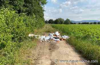 Illegale Müllentsorgung im Exter Feld in Rinteln » Rinteln - neue Woche