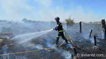 Una negligencia provoca un fuego de basuras en Hoyos del Espino - Avilared