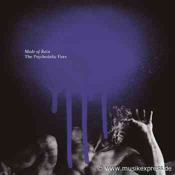The Psychedelic Furs: Made Of Rain (Kritik & Stream) - Musikexpress