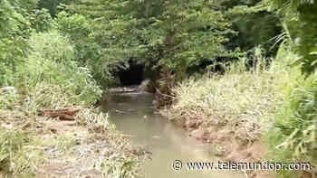 Hallan cuerpo en quebrada a la que conductora fue arrastrada por golpe de agua en Rincón - Telemundo Puerto Rico
