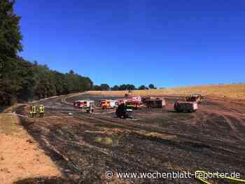 Ausbreiten auf Wald verhindert: 170 Feuerwehrleute bei Flächenbrand im Einsatz - Wochenblatt-Reporter