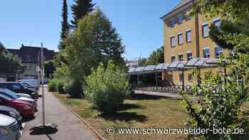 Albstadt: Das ewig kontroverse diskutierte Thema - Albstadt - Schwarzwälder Bote