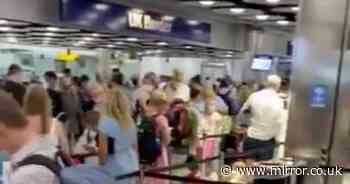 """Heathrow chaos as travellers queue for hours and chant """"get more staff"""""""