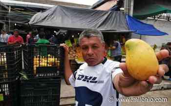Locatarios del mercado de Tampico hacen frente a crisis por covid - Milenio
