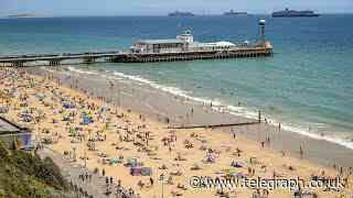 Beaches becoming 'unmanageable' as Britons opt for staycations - Telegraph.co.uk