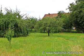 Bürger fordern: Wyhlen soll einen echten Dorfplatz erhalten - Grenzach-Wyhlen - Badische Zeitung