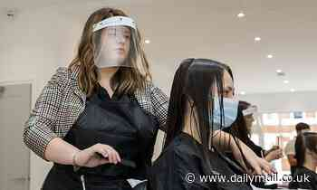 Ministers warn hairdressers could pass on coronavirus to clients because of their inadequate visors