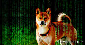 Dogecoin (DOGE) is now being used by crypto hackers after TikTok boom - CryptoSlate