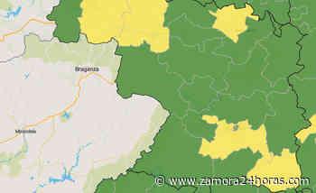 Cinco ZBS de Zamora vuelven al amarillo en el mapa del coronavirus - Zamora 24 Horas