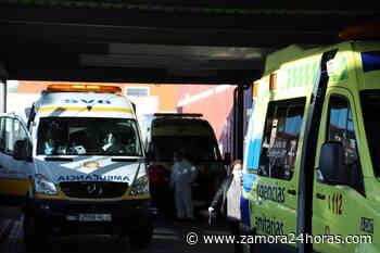 """""""Algunos"""" de los once nuevos contagios de coronavirus en Zamora son importados - Zamora 24 Horas"""