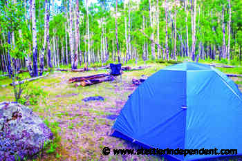Camping: What you should know before heading out - Stettler Independent