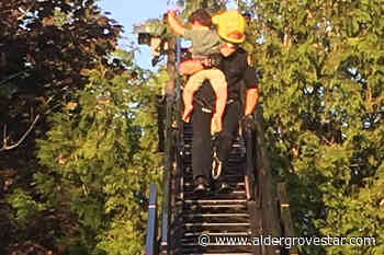 UPDATED: 3-year-old boy rescued from top of Langley tree - Aldergrove Star