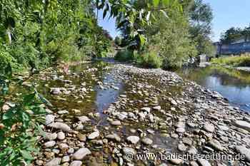 Der Pegel des Flusses Wiese sinkt bei Zell auf ein Rekord-Tief - Zell im Wiesental - Badische Zeitung