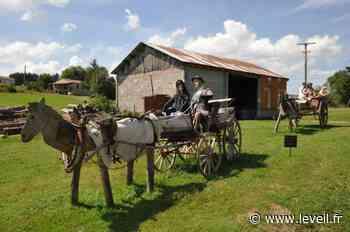 Non loin de Craponne-sur-Arzon, les épouvantails de Vauribeyre sont à découvrir - L'Eveil de la Haute-Loire