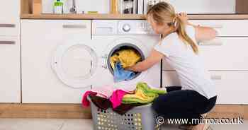 Mom claims that simple cleaning techniques can extend the life of the washing machine