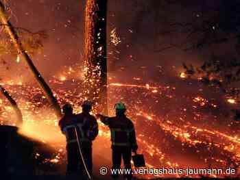 Bei Biarritz: Waldbrand in Frankreich zerstört Wald und etliche Häuser - www.verlagshaus-jaumann.de