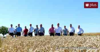 Erntepressekonferenz in Bopfingen: Trockenheit setzt Getreideernte weiterhin zu - Schwäbische