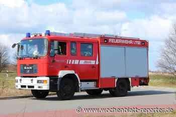 Feuerwehreinsatz in Germersheim: Pollen und Sonneneinstrahlung verursachen Brand - Germersheim - Wochenblatt-Reporter
