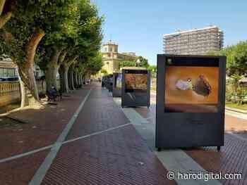La exposición fotográfica 'Naturaleza de La Rioja' podrá visitarse en Santo Domingo del 3 al 17 de - Haro Digital